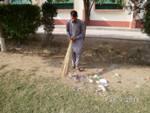 Dengue Activities