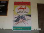 Dengue Activities